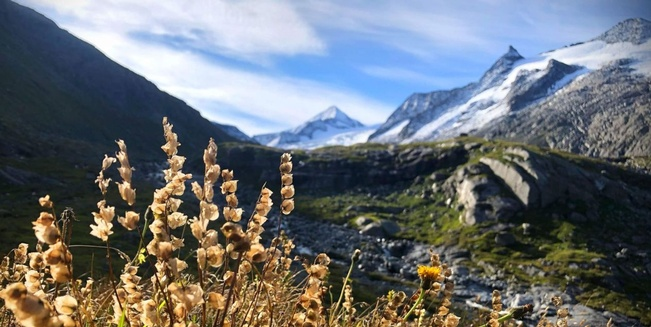 Sulzbachtal im Nationalpark Hohe Tauern